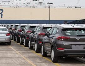 Xe Hyundai bị dồn ứ tại cảng do thị trường Mỹ đóng băng