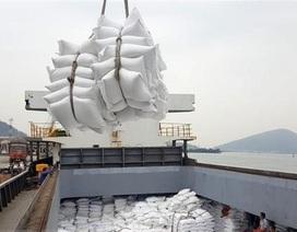 Xuất khẩu gạo: Bất thường dữ liệu tờ khai và lo ngại rủi ro đạo đức (!?)