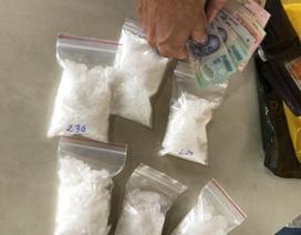 Đôi vợ chồng vận chuyển ma túy từ Vũng Tàu về Cà Mau tiêu thụ