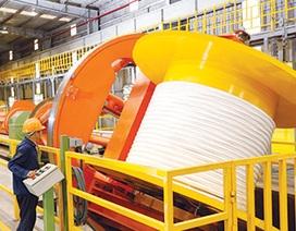 """""""Ông lớn"""" Thái Lan chi nghìn tỷ mua hai doanh nghiệp sản xuất cáp Việt Nam"""