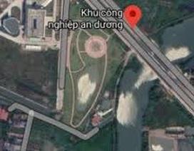 """Doanh nghiệp Trung Quốc xây vườn hoa giống hình """"đường lưỡi bò"""""""