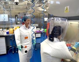 Tình báo Mỹ nói virus SARS-CoV-2 không phải do con người tạo ra