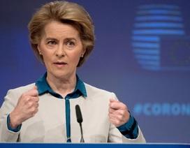 EU tăng sức ép lên Trung Quốc, kêu gọi điều tra Covid-19