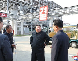 """Ông Trump """"vui mừng"""" vì ông Kim Jong-un đã trở lại"""