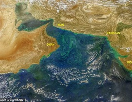 Tuyết tan ở đỉnh dãy Himalayas khiến nở rộ tảo xanh phát sáng độc hại