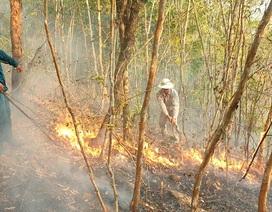Gần 10 ha rừng phòng hộ bị bà hỏa thiêu rụi