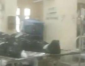 """""""Sốc"""" video bệnh nhân Covid-19 nằm cạnh xác chết trong bệnh viện"""