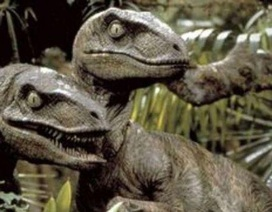 Bộ phim Công viên kỷ Jura đã sai: Khủng long Raptor không đi săn theo bầy