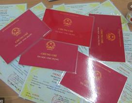Công bố danh sách đơn vị được tổ chức thi, cấp chứng chỉ ngoại ngữ, tin học