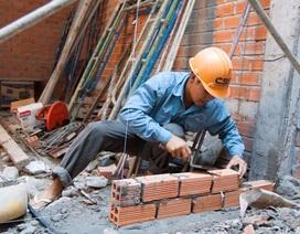Lao động nhập cư - cuộc chiến mưu sinh