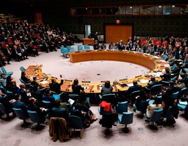 Lý do Mỹ bất ngờ chặn nghị quyết ngừng bắn toàn cầu giữa đại dịch