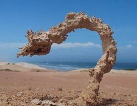 Các tia sét tạo ra những tác phẩm điêu khắc bằng cát tuyệt đẹp