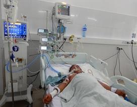 Ba nạn nhân trong một gia đình ở Quảng Ngãi bị ngộ độc nấm đã tử vong