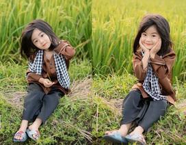 Bé gái xinh như thiên thần trên cánh đồng mùa lúa trổ bông