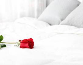 """""""Từ bông hoa cũ gửi đến bông hoa mới của anh"""""""