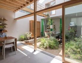 Ngôi nhà bên ngoài đơn giản, bên trong ẩn chứa cả vườn cây xanh mát