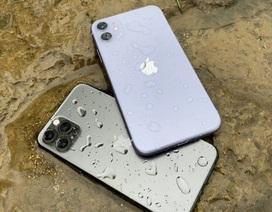 Doanh số iPhone giảm 77% do Covid-19