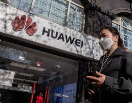 """Mỹ """"cấm cửa"""" Huawei thêm 1 năm"""
