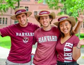 Hành trình vào Ivy League: P3 - Thuật toán lọc chọn hồ sơ của các trường