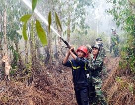 2 ngày vất vả dập đám cháy rừng ở Kiên Giang