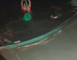 Giông tố bất ngờ nhấn chìm 10 thuyền cá trong đêm