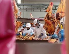 """Trung Quốc có thể ồ ạt """"giáng đòn"""" hàng xuất khẩu Australia để trả đũa"""