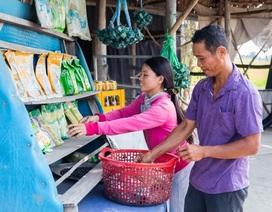 """Giải pháp đổi đời ở ĐBSCL: Có gì khác biệt trong dự án """"Ngôi làng bền vững""""?"""