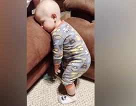 """Biểu cảm dễ thương của những em bé """"siêu buồn ngủ"""""""