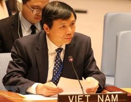 Việt Nam chủ trì họp riêng trực tuyến tại Hội đồng Bảo an