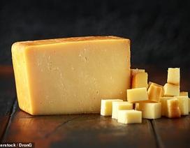 Ăn sữa hoặc phô mai nguyên kem có thể làm giảm nguy cơ mắc bệnh tim
