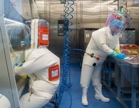 """Viện Virus học Vũ Hán: """"Nói Covid-19 rò rỉ từ phòng thí nghiệm là bịa đặt"""""""