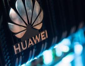 """""""Cơn ác mộng"""" của Huawei đang ngày càng trở nên tồi tệ"""
