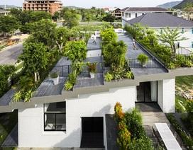 """Biệt thự """"độc nhất, vô nhị"""" trồng cả rừng cây trên mái nhà ở Nha Trang"""