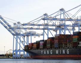 Doanh nghiệp Mỹ thiệt hại 1.700 tỷ USD vì thương chiến Mỹ-Trung