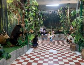 Khám phá bảo tàng động thực vật ở Sài Gòn