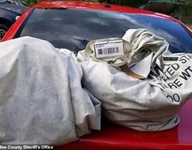 Nhặt 2 túi rác giữa đường, không ngờ vớ được đống tiền 23 tỷ đồng