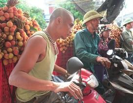 Thương lái nườm nượp thu mua vải Thanh Hà chín sớm