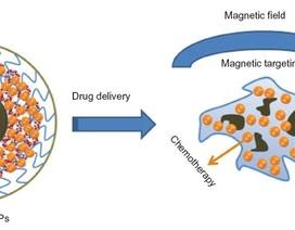Hạt nano từ tính, giải pháp mới điều trị ung thư