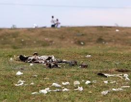 Xả rác tràn ngập bãi tự nhiên ven sông Hồng