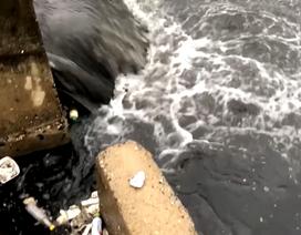 Vi phạm về môi trường, 2 công ty bị xử phạt gần 1 tỷ đồng