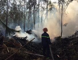 Khống chế đám cháy rừng không để lan sang khu mộ bà Hoàng Thị Loan