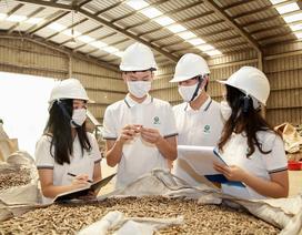 8 học sinh Hà Nội tái chế lõi ngô thành sản phẩm cho trồng trọt, chăn nuôi
