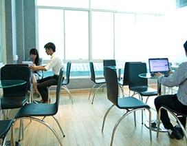 Bất trắc gì khi thuê văn phòng ảo làm trụ sở công ty để khởi nghiệp?