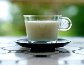 Người bị đái tháo đường loại 2 nên tránh loại sữa nào?
