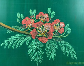 Thầy giáo vẽ hoa phượng lên bảng khiến người xem trầm trồ, ngưỡng mộ