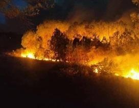 Cháy rừng thông hơn 30 năm tuổi,cả nghìn người tham gia dập lửa