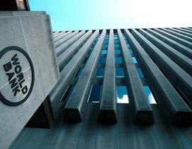 Công ty Việt Nam bị World Bank cấm vận 7 năm vì gian lận nói gì?
