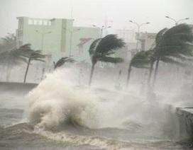 Việt Nam hứng 5-6 cơn bão, áp thấp nhiệt đới trong năm 2020