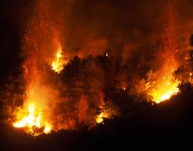 Bộ Nông nghiệp chỉ đạo các biện pháp ngăn thảm họa cháy rừng