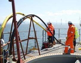 Sự cố cáp quang biển khắc phục xong, khôi phục 100% Internet đi quốc tế